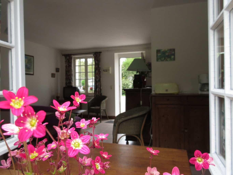 salon avec fleur